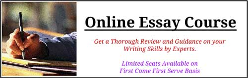 Essay Writing Format For Ias Mains 2015 - image 8